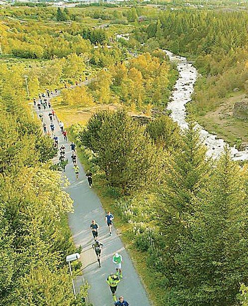 गुजरात से दिल्ली तक बनेगी 1400 किमी लंबी ग्रीन वॉल
