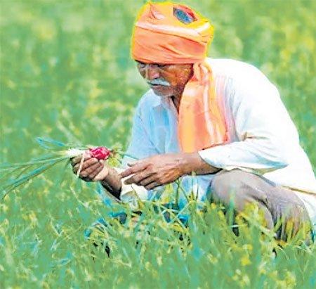पीएम-किसान के सभी लाभार्थी को मिलेगा 2 लाख का दुर्घटना बीमा