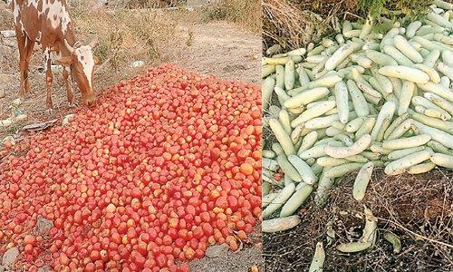 लॉकडाउन का असर: सब्जियां फेंकने को मजबूर किसान